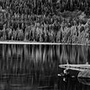 20160920_Oregon_3823_BW