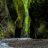 Oregon - Oneonta Gorge 2