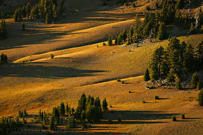 Mountain side at Crater Lake National Park in Oregon.  Photo by Kyle Spradley | www.kspradleyphoto.com