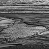 20160910_Oregon_2854_BW