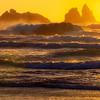 20160908_Oregon_2713