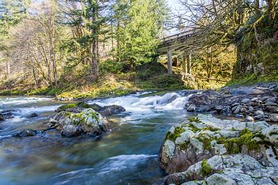 Mountain Stream in Oregon