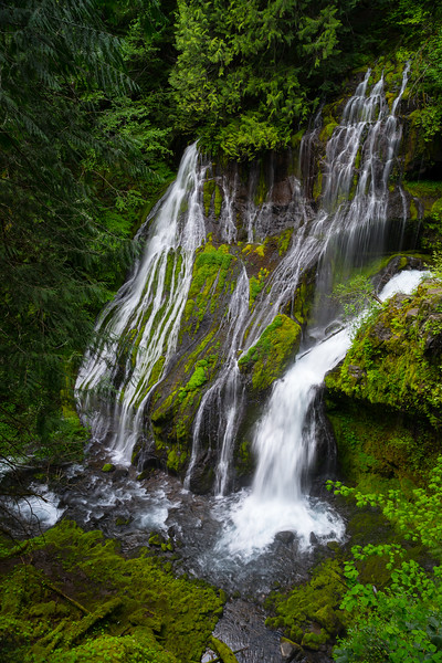 Oregon - Panther Creek Falls