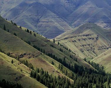 Native Lands MM7563