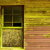 window of abandoned shack