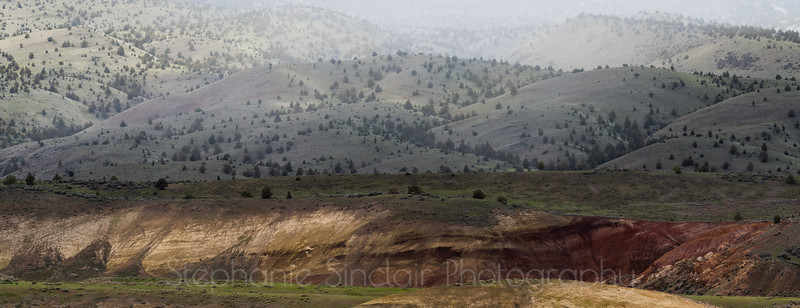 Juniper Hills
