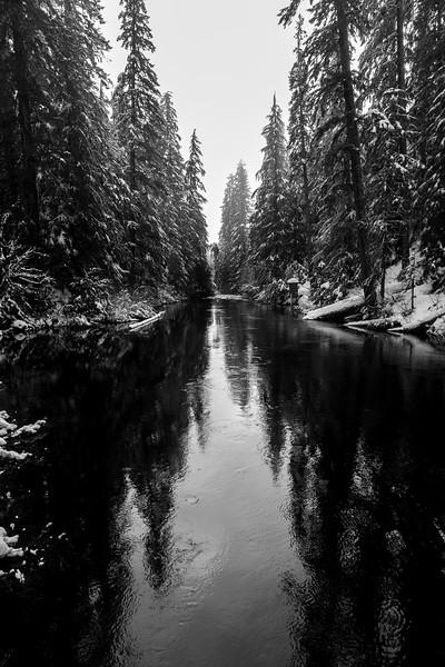 Mckenzie Winter Reflections