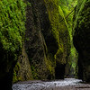 Oregon - Oneonta Gorge