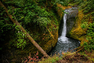 A waterfall along the Columbia Riger Gorge drive in Oregon.  Photo by Kyle Spradley | www.kspradleyphoto.com