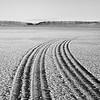 Tracks on the Alvord Desert Playa