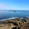 Simpson Reef and ocean view from Cape Arago State Park