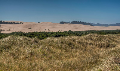 oregon-coast-sand-dunes