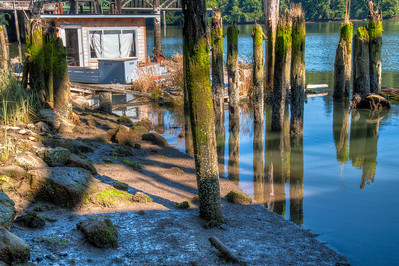 umpqua-river-pilings-2