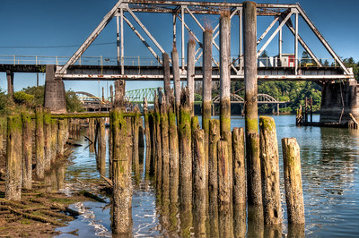 umpqua-river-pilings