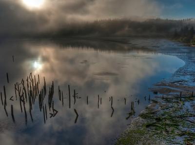 foggy-siuslaw-river