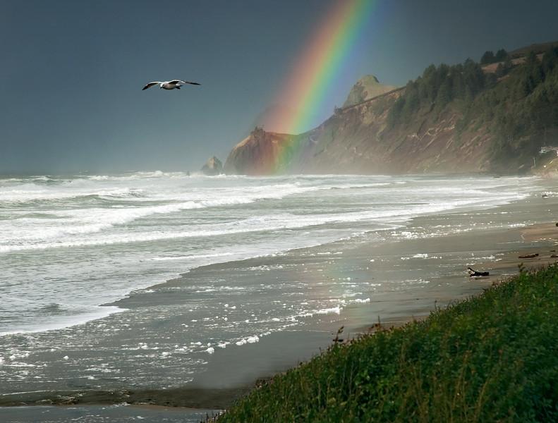 New Year's Rainbow on the Central Oregon Coast<br /> Land's End near Lincoln City, Oregon<br /> January 2006<br /> <br /> Copyright © 2006 Rick Kruer<br /> rickkruer.com<br /> <br /> ND70_2006-01-02DSC_2779-LandsEndRainbowCloseupSeagullFlying-nice-11.psd