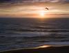 Sunset Seagull on the Central Oregon Coast<br /> July 2008<br /> <br /> Copyright © 2008 Rick Kruer<br /> rickkruer.com<br /> <br /> D200_2008-07-14DSC_6758-CavalierSunsetSeagullFlying-nice-3.psd