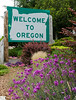 Welcome to Oregon US101 Road Sign<br /> Oregon/California Border<br /> July 2008<br /> <br /> Copyright © 2008 Rick Kruer<br /> rickkruer.com<br /> <br /> D200_2008-06-30DSC_5878-WelcomeToOregonSignFlowers-3.psd