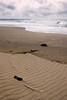 Wind patterns in the sand<br /> Gleneden Beach, Oregon<br /> July 2007<br /> <br /> Copyright © 2007 Rick Kruer<br /> rickkruer.com<br /> <br /> D200_2007-07-19DSC_2520-SandPatternsTall-2.psd
