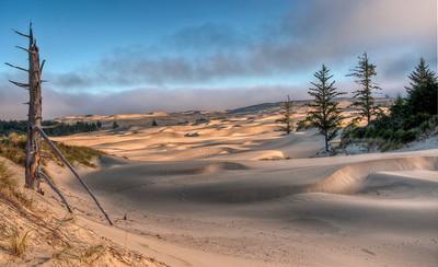 oregon-sand-dunes-6