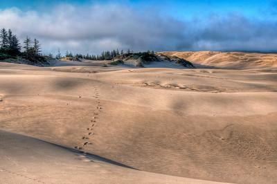 oregon-sand-dunes-6-2