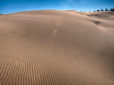 oregon-sand-dunes-20