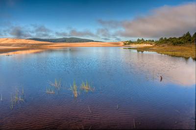 oregon-sand-dunes-pond-2
