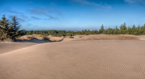 oregon-sand-dunes-12