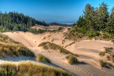oregon-sand-dunes-23