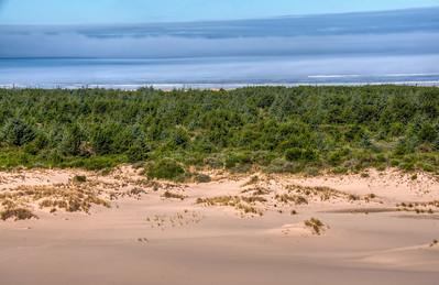 oregon-sand-dunes-ocean
