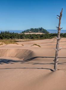 oregon-sand-dunes-22