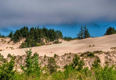 oregon-sand-dunes-24