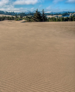 oregon-sand-dunes-17