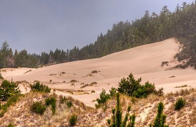 oregon-sand-dunes-fog