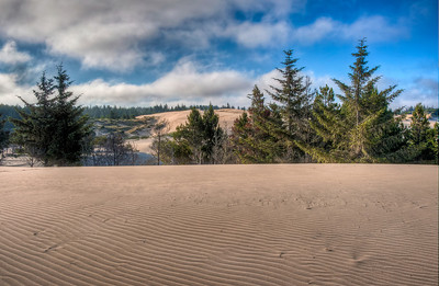 oregon-sand-dunes-9