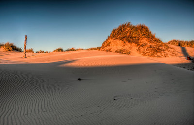 oregon-sand-dunes-sunset