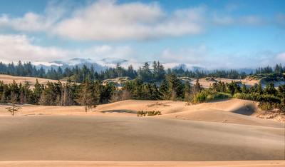 oregon-sand-dunes-14