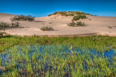 oregon-sand-dunes-pond-3