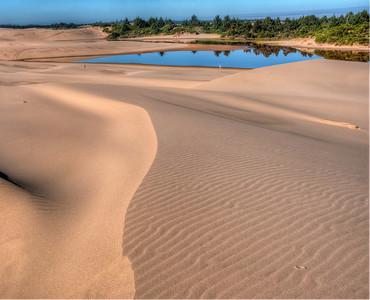 oregon-sand-dunes-pond-4