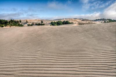 oregon-sand-dunes-8