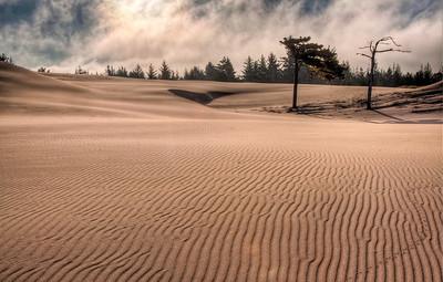 oregon-sand-dunes-4-2