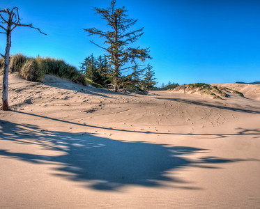 oregon-sand-dunes-21