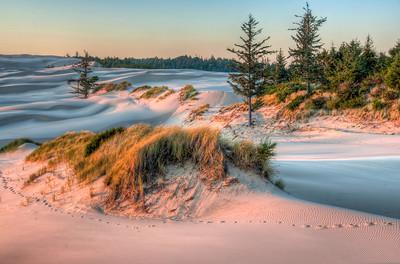 oregon-sand-dunes-3