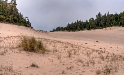 oregon-sand-dunes-fog-2