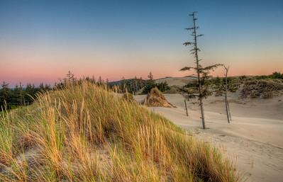 oregon-sand-dunes-5