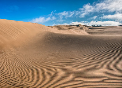 oregon-sand-dunes-13
