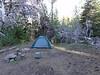 Our campsite near the trailhead.