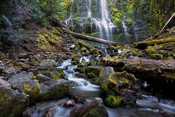 Oregon/Washington