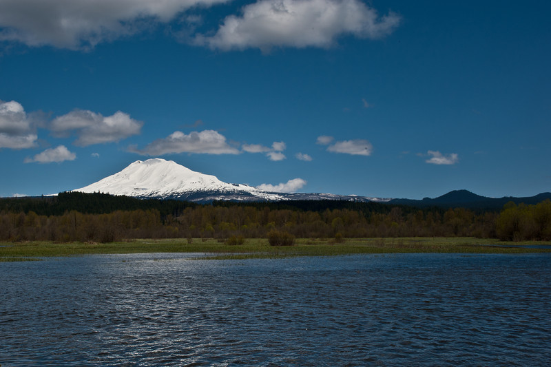 Mount Adams and Trout Lake.