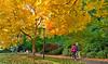 Lithia Park, Ashland, Oregon<br /> © 2010 Jim Craven, All rights reserved.
